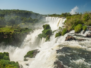 Ibera_Iguazu_Photo_Walking_Tour.jpg